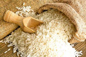 ایران؛ بزرگترین واردكننده برنج در جهان!