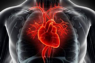 حیات انسان در گرو سلامت قلب است
