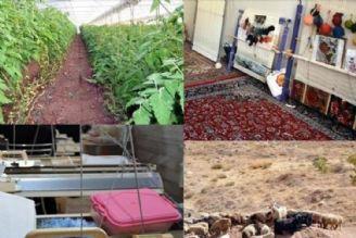 سهم عشایر در توسعه اقتصاد روستا