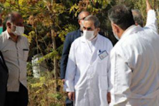 راهاندازی بخش ویژه اورژانس و درمانگاه کرونا در بیمارستان «مسیح دانشوری»