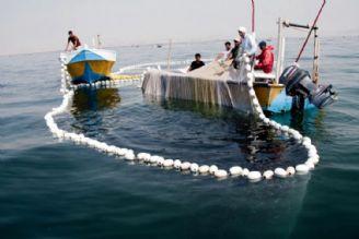 ظرفیت اکولوژیک و بیولوژیک خلیج فارس بزودی استخراج میشود