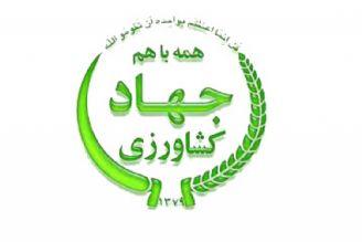 واگذاری مسئولیت تامین و عرضه مرغ، تخممرغ و گوشت تا مرحله عمده فروشی به وزارت جهاد كشاورزی