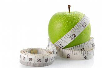 نوع تغذیه باید بر اساس فعالیت روزمره تعیین شود
