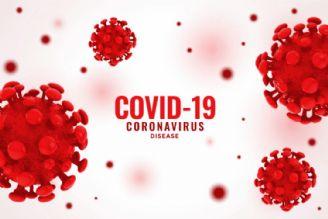 COVID-19 claims near 50,000 lives across Iran