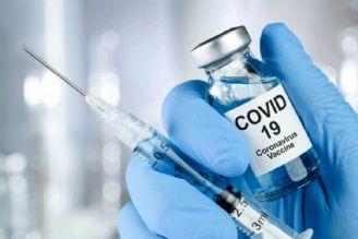 12پرونده تولید واکسن کرونا در ایران