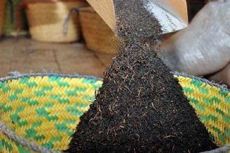 واردات، روی چای داخلی را سیاه کرد