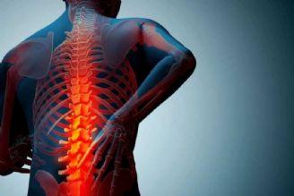 بی حرکتی عامل اصلی دردهای اسکلتی عضلانی در سالمندان