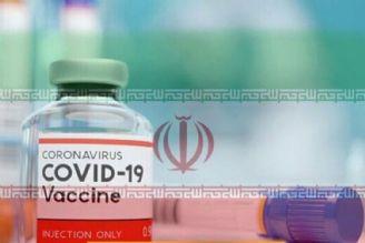 آغاز تولید انبوه واکسن کرونا در شرکت برکت