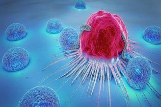 سالانه نزدیک به 51 هزار مرگ ناشی از سرطان در کشور داریم