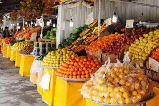 توزیع میوههای تنظیم بازار از اواسط اسفند