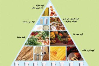 نبود نظم غذایی یكی از عوامل مهم در چاق شدن افراد است