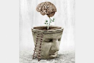 نداشتن اطلاعات جامعی از مغز، از مشکلات تئوری فلسفه است