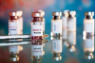 تولید 15 میلیون دوز واکسن کرونا از اوایل تابستان