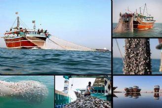 بهره برداری پایدار از دریا نیازمند افزایش آگاهی است
