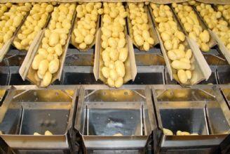 بهره برداری از كارخانه صنایع تبدیلی سیب زمینی شهرستان بهار تا پایان سال