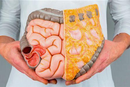 انواع مختلف درد شکم نشانه چیست؟
