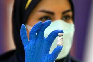 واکسن و ناباروری