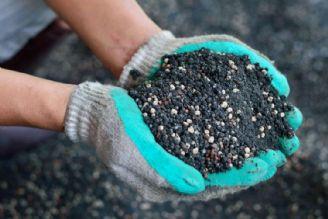 بومی سازی کودها یک قدم به سوی امنیت غذایی است