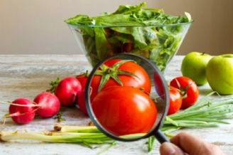 ایمنی مواد غذایی در ایران نسبی است