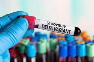 قرنطینه کرونای دلتا «21 روز» است/وجود ویروس کرونا در مدفوع