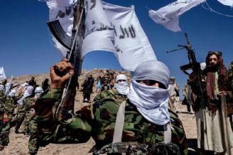طالبان توانایی تأمین امنیت مردم افغانستان در برابر داعش را ندارد