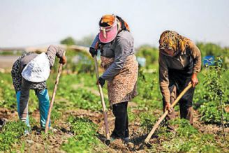 پرداخت بیش از 13 هزار میلیارد تومان تسهیلات به روستاییان